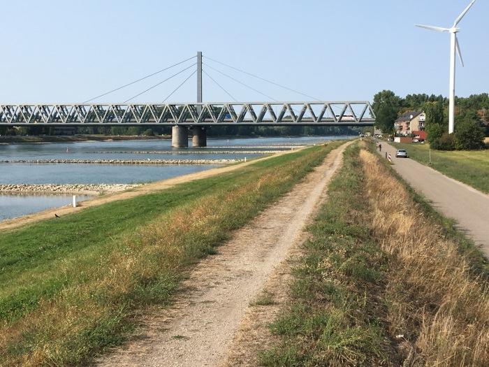 Hochwasserschutzdamm am Rhein