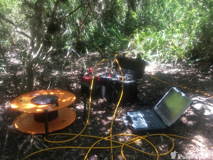Geoelektrik im Mangrovenwald